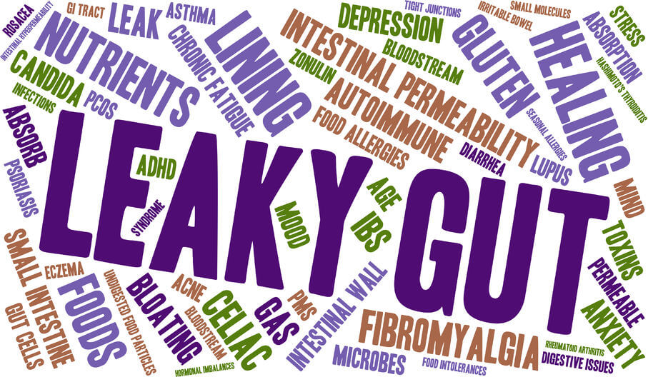 Leaky Gut – A Hidden Epidemic